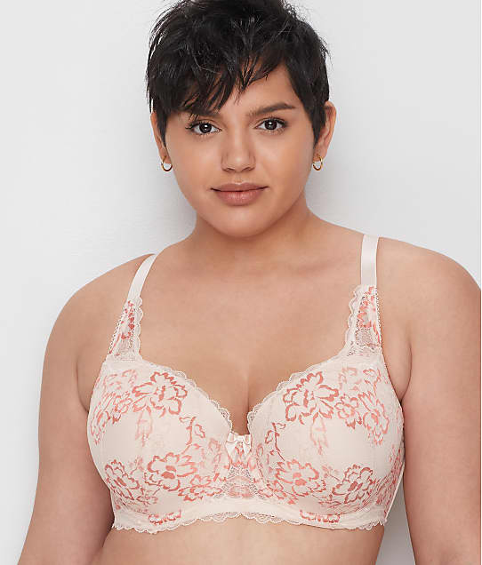 City Chic: Carmen Lace Bra