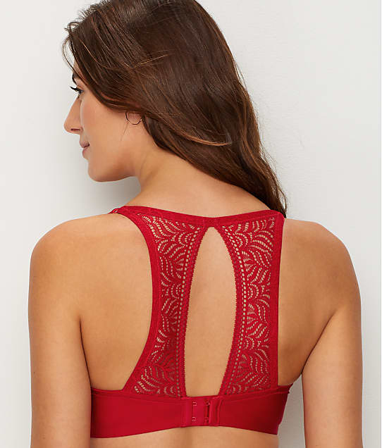 Paramour: Carolina Lace Open-Back Bra