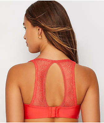 Paramour Carolina Lace Open-Back Bra