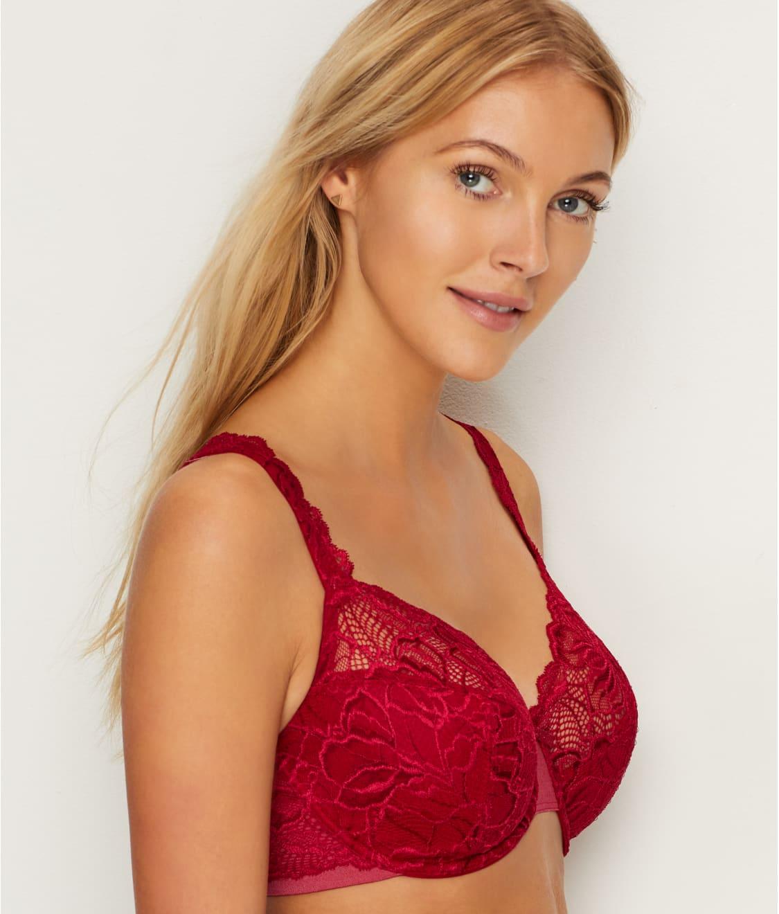 1947b2912f See Lace Desire Bra in Armature Red